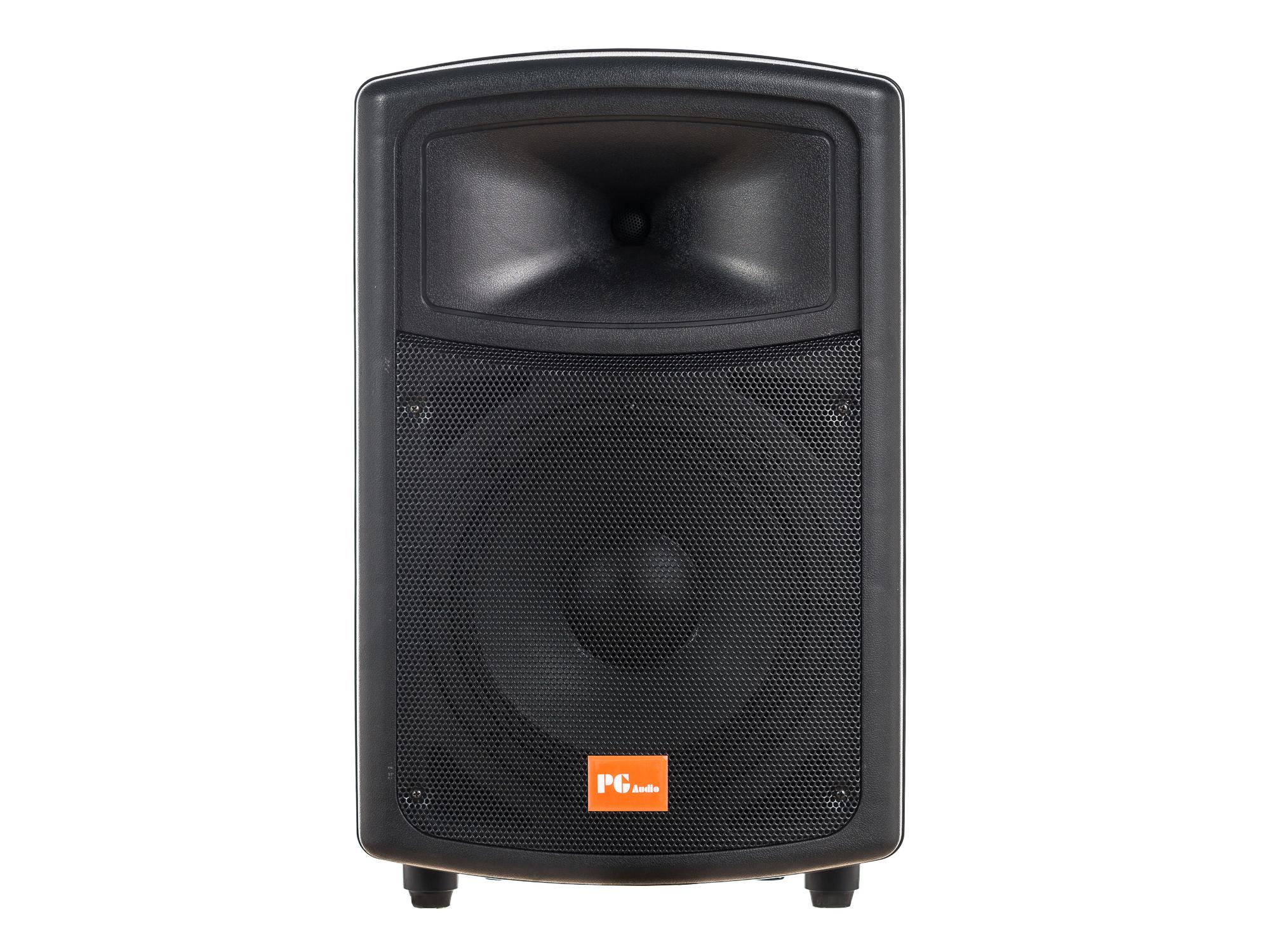 PG Audio PA 100,Disko,Party,Pa Lautsprecher,10 Zoll,1 Stück Neu 001